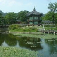 Photos #1 – South Korea