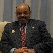 Ethiopian Prime Minister Meles Zenawi Stirs Debate