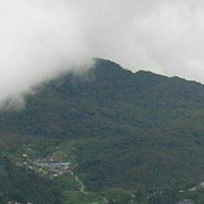 My own visit to the Cameron Highlands, Malaysia in 2007